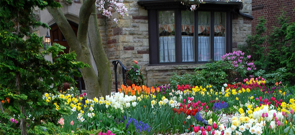 Lovely Providing Premier Landscape Services For Over 35 Years!