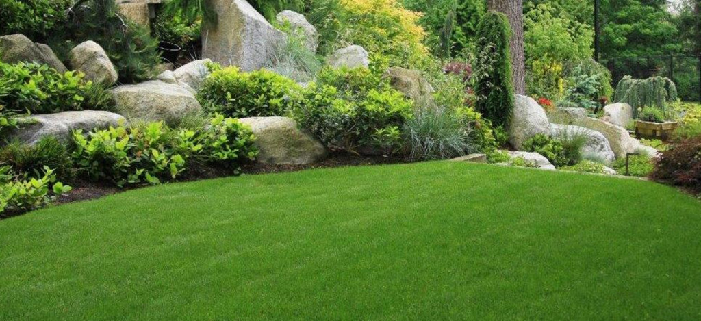 Spring Cleanups Look Better with Chris James Landscaping - Spring Cleanup Services Bergen County NJ Landscaper
