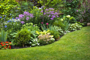 Flower Garden In Nj Summer Flowers Chris James Landscaping